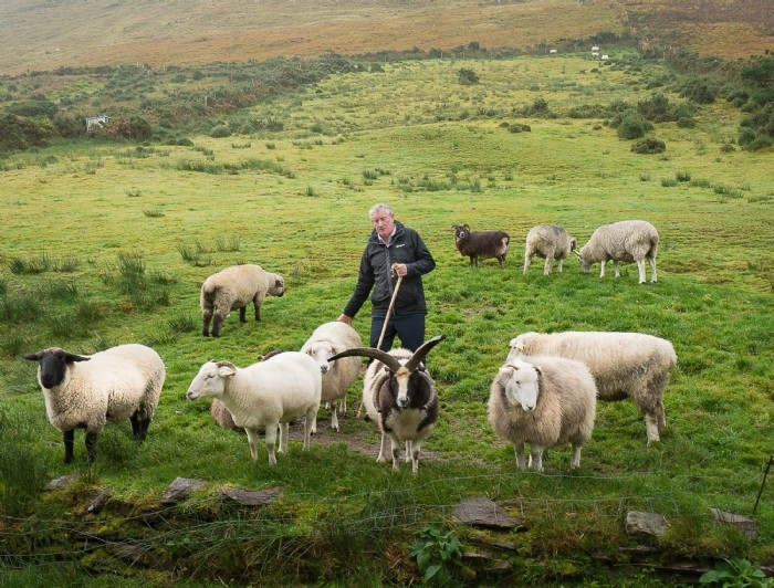 Sheep Farmer - Kerry